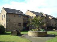 1 bed Flat to rent in Evergreen Court, Wickford