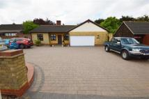 Detached Bungalow for sale in London Road, Rawreth
