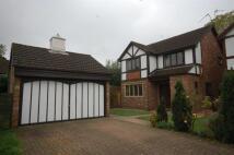 Tudor Manor Gardens home