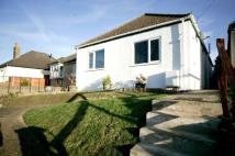 Detached Bungalow in New Cheveley Road...