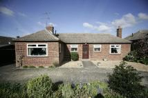 Detached Bungalow in Malvern Close, Newmarket...
