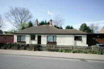 3 bedroom Detached Bungalow in Cheveley Road, Newmarket...