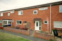 Terraced home in Parkers Walk, Newmarket...