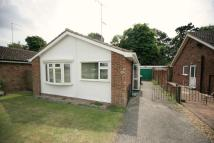 2 bed Detached Bungalow for sale in Norfolk Avenue...