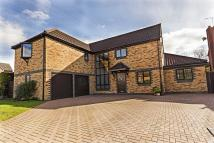 5 bed Detached home in Swan Grove, Exning...