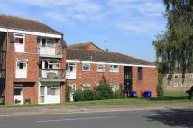 2 bed Flat in George Lambton Avenue...