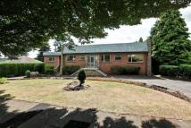 Detached property for sale in Fern Close, Bramcote