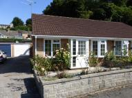 Semi-Detached Bungalow in YEOVIL