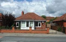Oldfield Road Detached Bungalow to rent