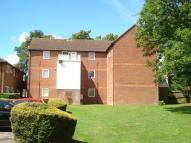 Studio flat to rent in Matthews Close...