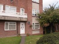 Pettits Lane North Ground Flat to rent