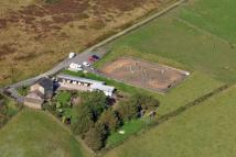 Farm House for sale in Mottram