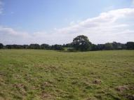 Great Land for sale