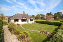 Norley Road Detached Bungalow for sale