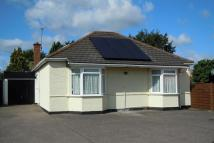 Mildenhall Road Detached Bungalow for sale