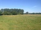 River Meadow