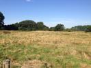 Grange Meadow