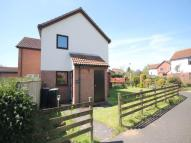 2 bed Detached house to rent in Saffron Drive ...