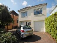 Detached property to rent in Harland Road ...