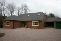 Detached Bungalow to rent in Hillock Lane, Gresford...