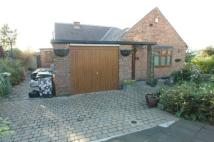 Bungalow for sale in Cavill Road, Sheffield