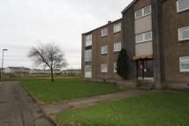 Flat to rent in Charles Avenue, Renfrew