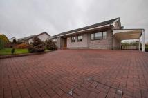 5 bedroom Bungalow for sale in Rosehall Road, Shotts