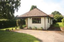 Hollybush Lane Bungalow for sale