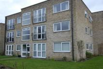 Flat to rent in Riseley Road, Maidenhead