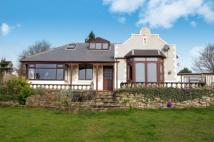 Bungalow for sale in Spencer Road, Belper