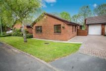 3 bedroom Bungalow for sale in Kestrel Road, Northwich...