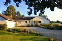 3 bedroom Bungalow in Stonefield,  Insh...