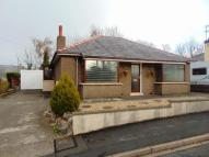 2 bed Detached Bungalow to rent in Bloomfield Park...