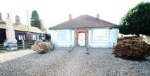 3 bedroom Detached Bungalow in Norwich Road, Fakenham