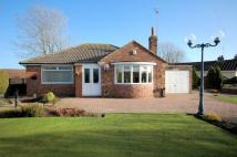Ivygarth Detached Bungalow for sale