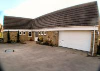 Detached Bungalow for sale in Beech Drive, Scalby...