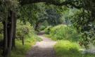Local Park Walk