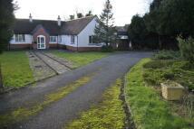 Bungalow in Glen Rise, Oadby, LE2