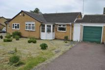 Bungalow to rent in Tiverton Close, Oadby...