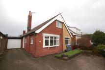 Detached Bungalow to rent in 196 Newton Drive