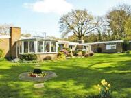 4 bedroom Detached Bungalow to rent in Hawthorn Lane...