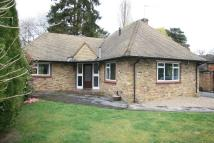 2 bed Detached Bungalow for sale in Christmas Lane...