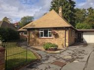 2 bed Detached Bungalow in CHRISTMAS LANE...