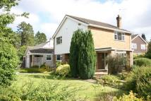 4 bed Detached house to rent in Collinswood Road...