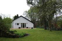Detached house to rent in Cairns Drive, Milngavie...