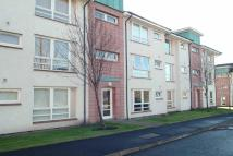 Netherton Avenue Ground Flat to rent