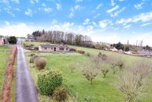 Bungalow for sale in Easton-in-Gordano