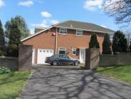 Detached home to rent in 172 Stepney Road...
