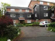 Grosvenor Road Ground Flat to rent