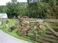 Detached property in Dolfrwynog Newydd...
